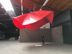 verbeke4_Zoro Feigl, Poppy, 2010, Verbeke Foundation