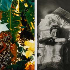Twee opmerkelijke expo's bij gallery Fifty One in Antwerpen
