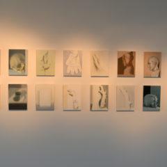 Stilleven is niet dood: Christiaan Kuitwaard in Light Cube, Ronse