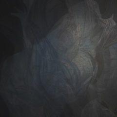 'Illusive flesh of light', een indringende reeks van Hedwig Brouckaert