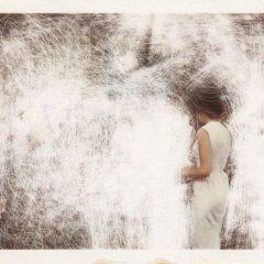 Familiefoto's tot het abstracte verheven… intrigerend werk van Odetta England
