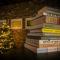 11 kunstboeken voor onder de Kerstboom