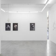 Kunst over leven en dood in Hopstreet Gallery