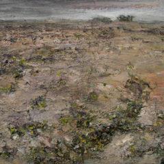 Het nieuwe landschap… Han Klinkhamer te zien bij Shoobil Antwerpen