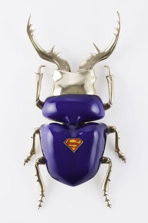 pugliese_beetle2