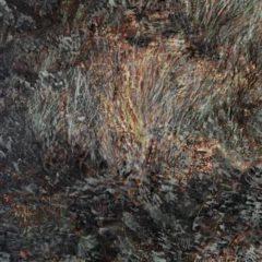 Het scheppend vermogen van een landschap… nieuw werk van Patrick Verlaak bij Galerie De Buck te Gent