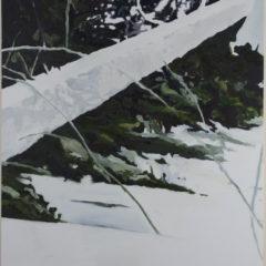 'The trail', een nieuwe wending in het werk van Koen Fillet?