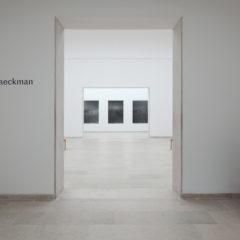 Interview over de achtergrond van het werk van Dirk Braeckman op de biënnale van Venetië