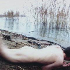 'Metamorphosis', een blijvend beklijvende reeks van Frédéric Fontenoy