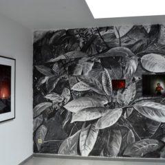 De realiteit en haar schaduw: Bieke Depoorter en Ward Zwart bij Galerie 10a
