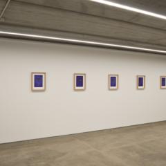 Jan Fabre's tekeningen, denk- en kijkdozen bij Deweer Gallery