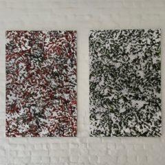Bijzondere nieuwe expo van Patrick Keulemans in Gooik