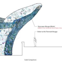 De 'making of' van 'The Bruges Whale' op de Triënnale van Brugge