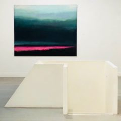 Feeling blue in de tentoonstelling Territorium van Marc Kennes
