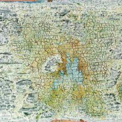 De nieuwe reeks van Lode Laperre, Naevus: een abstracte en innemende reflectie over jeugdherinneringen