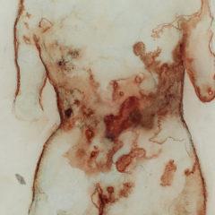 Bloedstollend nieuw werk van Sofie Muller