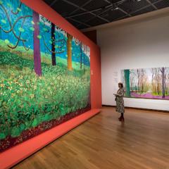 'The joy of nature'. David Hockney over waarom hij van van Gogh houdt