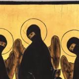 De activistische iconen van Oxana Shachko