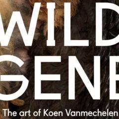 Het wilde gen van Koen Vanmechelen, een niet te missen reportage