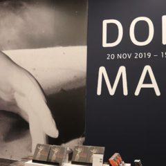 Dora Maar: veel meer dan het liefje van Picasso