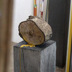 B-Coöperation, kunst en natuur in het werk van Jef Faes, nog tot 23 februari bij Shoobil Antwerpen