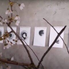 Kunstenaars in quarantaine (#14): Ine Lammers