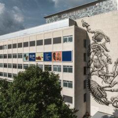 Ontdek nieuwste werk van street artist ROA op universiteitsgebouw Gent