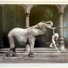 Antwerpse Handelsbeurs, fotografische parel – Expoflits #16