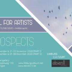 Open call voor Limburgse kunstenaars