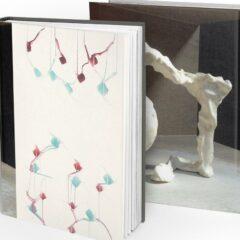 Fluisteringen op doek: nieuwe monografie van Kris Fierens
