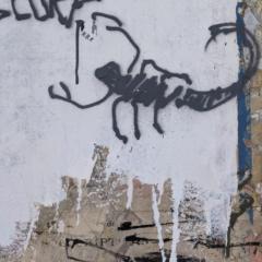 De zwarte hond van KRM strijkt opnieuw neer bij Galerie Solo, Antwerpen